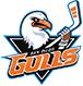 San Diego Gulls at Pechanga Arena San Diego
